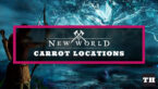 Where to Find Carrots in New World (Locations & Recipes)